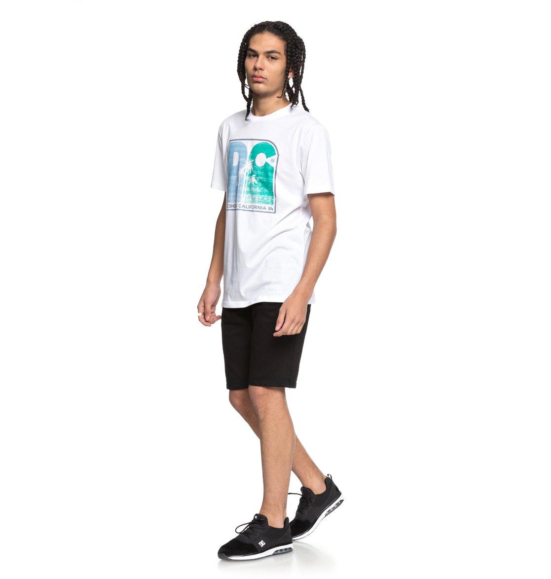 DC-Shoes-Sunset-Palms-Camiseta-para-Hombre-EDYZT03767 miniatura 12