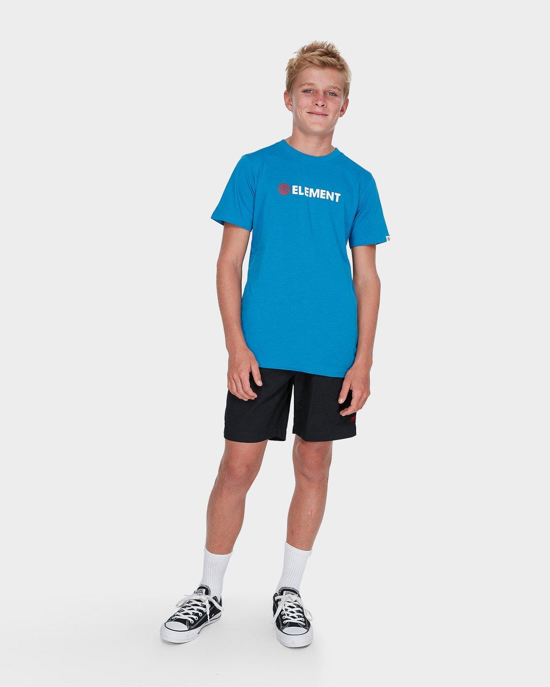 3 BOYS YOUTH HORIZONTAL SHORT SLEEVE TEE Blue 383001 RVCA