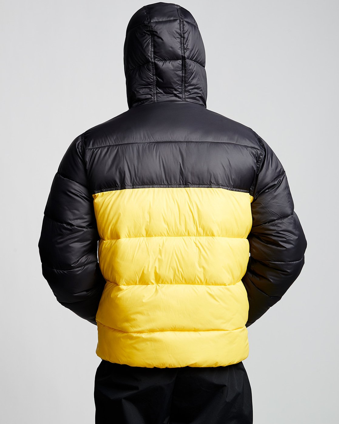 2 Primo Alder Avalanche - Chaqueta para Hombre Amarillo Q1JKD5ELF9 Element