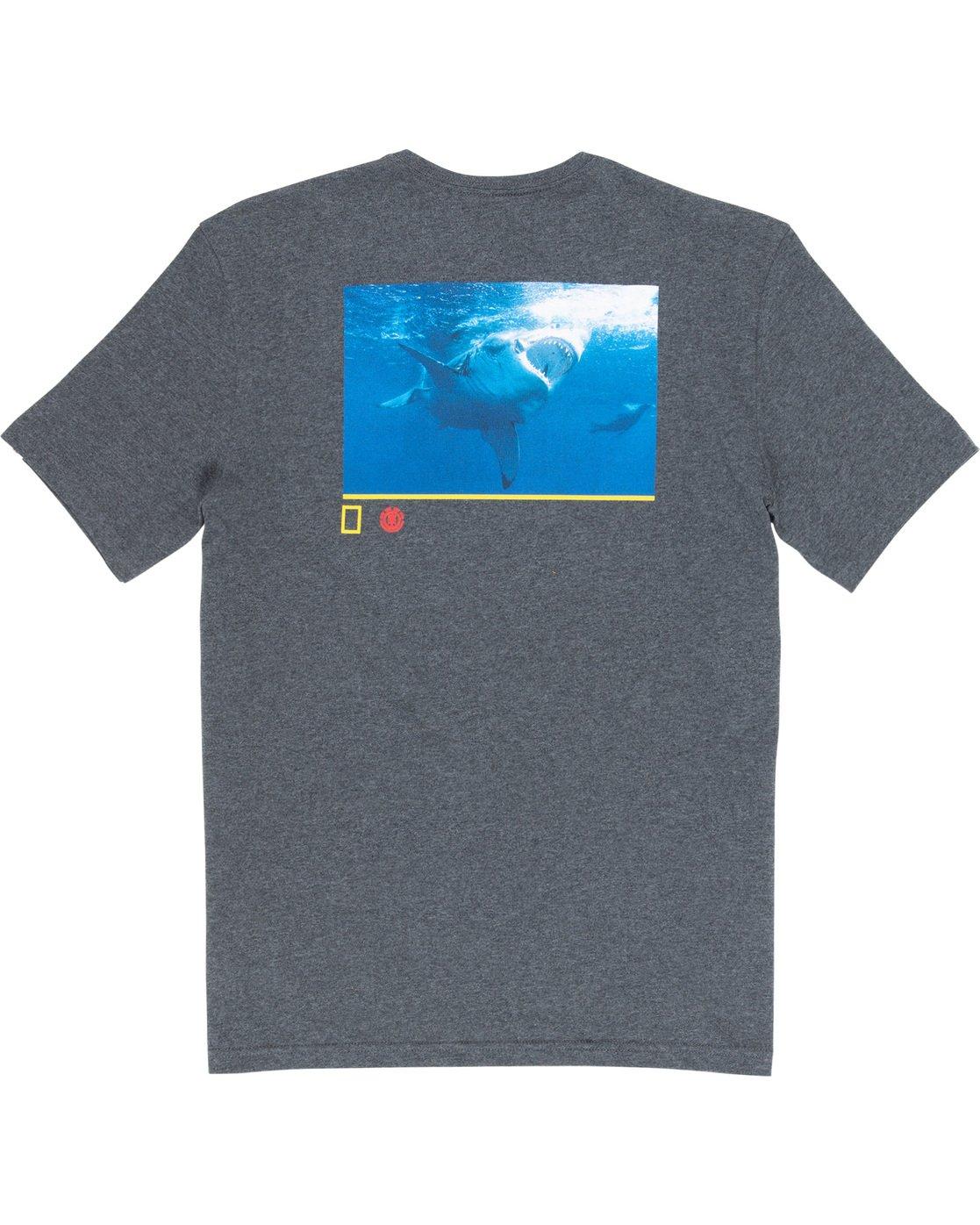6 Current - T-Shirt  Q1SSF6ELF9 Element