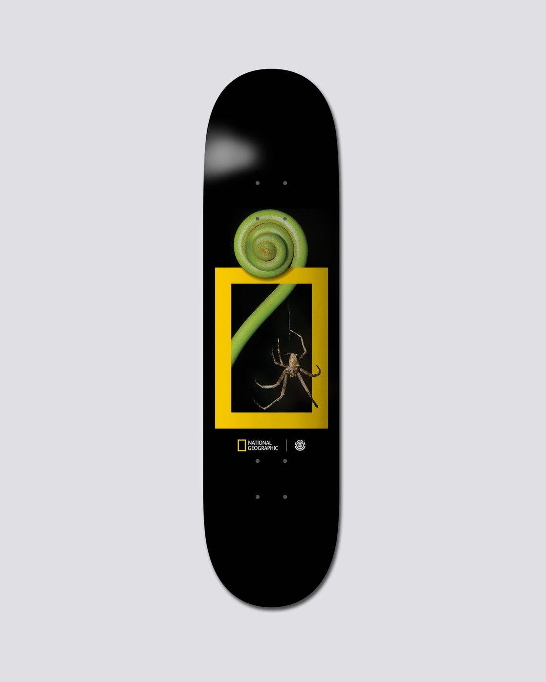 "0 National Geographic 8"" Nat Geo Spider - Skate Decks  S4DCB2ELP0 Element"