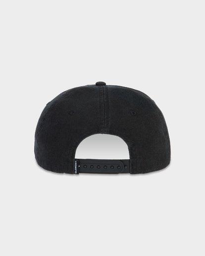 2 CA BEAR CAP  163608 Element
