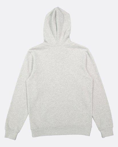 5 CORNELL CLASSIC HOODIE Grey 176303 Element
