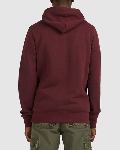 3 CORNELL CLASSIC HOODIE Red 176303 Element