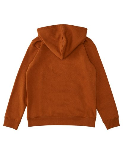 1 Boys' Vertical Hoodie Brown ALBFT00124 Element