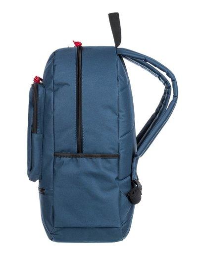 2 Access 24L Medium Daily Backpack  ALYBP00126 Element