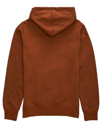 1 Cornell Classic Hoodie Brown ALYFT00106 Element