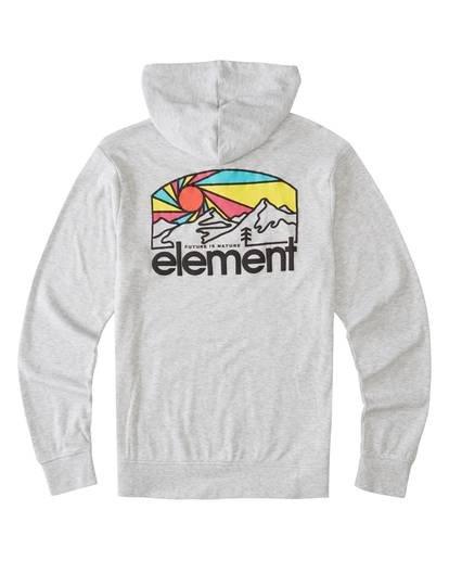 1 Ridge Art Hoodie Grey ALYKT00100 Element