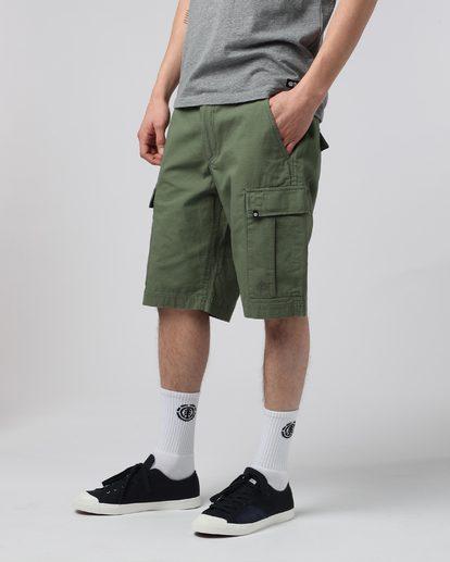 2 Legion Cargo Wk Ii - shorts pour Homme Marron H1WKA9ELP8 Element
