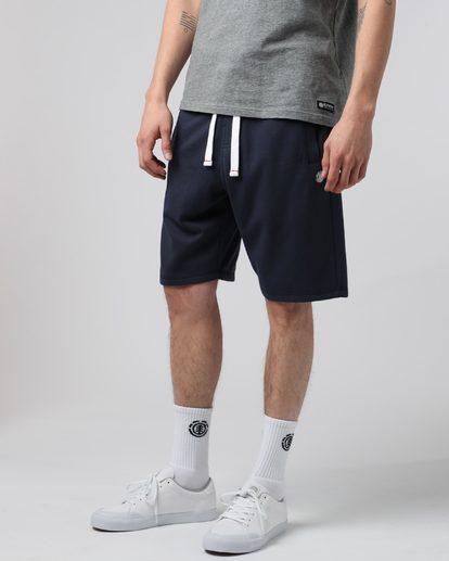 2 Cornell Wk - shorts pour Homme  H1WKB5ELP8 Element