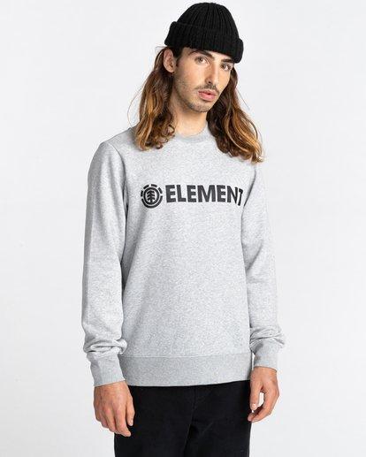 1 Blazin - Sweatshirt for Men Grey U1CRA1ELF0 Element