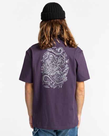 3 Acceptance - T-shirt pour Homme Violet Z1SSO9ELF1 Element