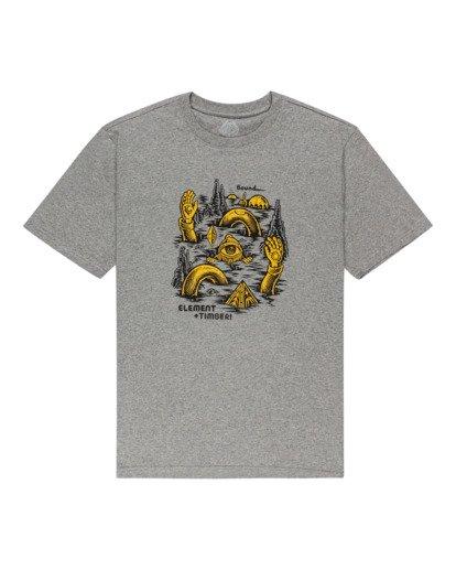 0 Cracks - T-shirt pour Homme Gris Z1SSP1ELF1 Element