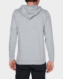 3 CORNELL CLASSIC HOODIE Grey 176303 Element