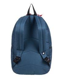 3 Access 24L Medium Daily Backpack  ALYBP00126 Element