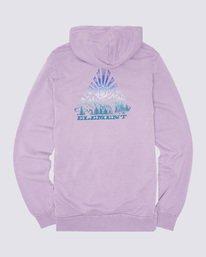 1 Longley Pigment Hoodie Purple ALYSF00100 Element