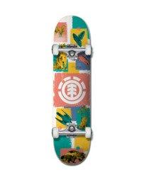 0 Naturalist Complete Skateboard Multicolor ALYXW00141 Element