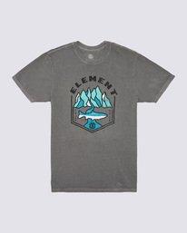 0 Sora Pigment T-Shirt Grey ALYZT00168 Element