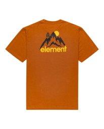 1 Goletta Short Sleeve T-Shirt Brown ALYZT00318 Element