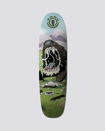 "0 Nature Wins Bear 8.25"" Skateboard Deck  BDLG1NWB Element"