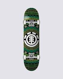 0 Cozumel Skateboard Complete  COLG3CZM Element