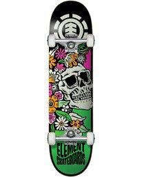1 Aloha Complete Skateboard  COLG4ALH Element