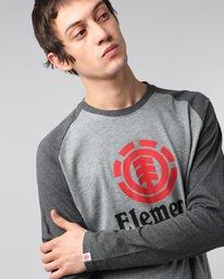 2 Vertical Raglan Qtr - T-Shirts für Männer  H1LSA3ELP8 Element