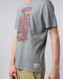 2 Joyride Ss - Tee Shirt for Men  H1SSF6ELP8 Element
