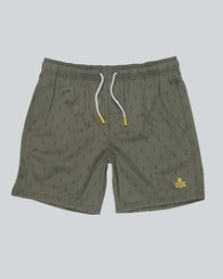 0 Howland Raft Print W - Walkshort for Men  H1WKC1ELP8 Element
