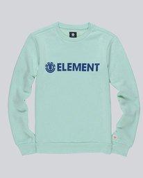 0 Blazin - Sweatshirt für Männer  L1CRA9ELF8 Element