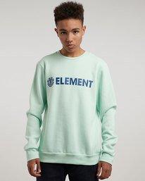 1 Blazin - Sweatshirt für Männer  L1CRA9ELF8 Element