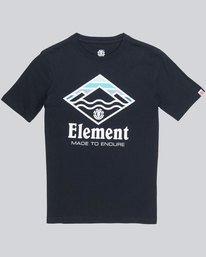 0 Layer Ss Boy - Tee Shirt for Boys  L2SSC1ELF8 Element