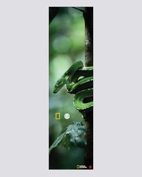 0 National Geographic Nat Geo Spirit Grip - Skate Accessories Green S4AHA1ELP0 Element
