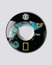 0 Nat Geo Iguana Filmer 62Mm - Skate Accessories  S4WHA3ELP0 Element