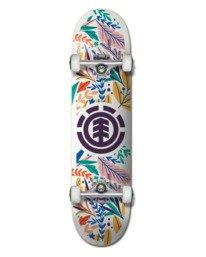 "0 7.75"" Floral Party - Skateboard Black W4CPB8ELP1 Element"