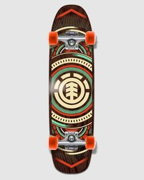 0 HATCHED CRUISER 8.75 COMPLETE SKATEBOARD Multicolor W4DCPB9 Element