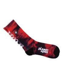 0 Pota - Chaussettes de skate pour Unisexe Rouge Z5SOB1ELF1 Element