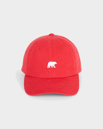 0 Youth CA Bear Cap  373614 Element