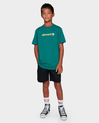 3 BOYS YOUTH HORIZONTAL SHORT SLEEVE TEE Green 383001 Element