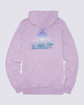 1 Longley Pigment Hoodie Purple ALYSF00100 Element