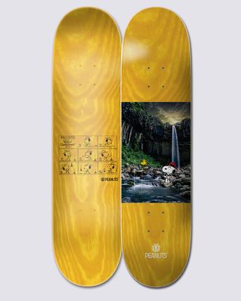 PEANUTS WATER  ALYXD00163