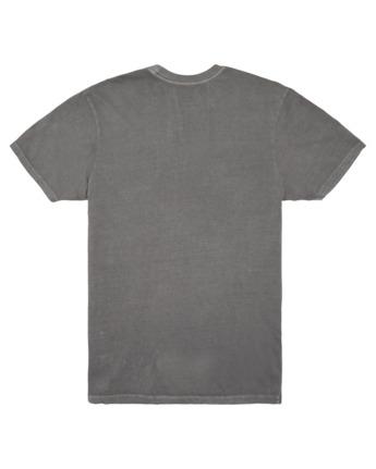 3 Longley Pigment T-Shirt Grey ALYZT00166 Element