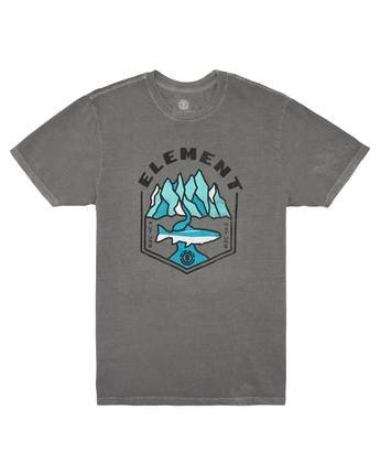 2 Sora Pigment T-Shirt Grey ALYZT00168 Element