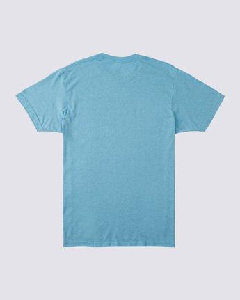 1 Victory T-Shirt  ALYZT00231 Element