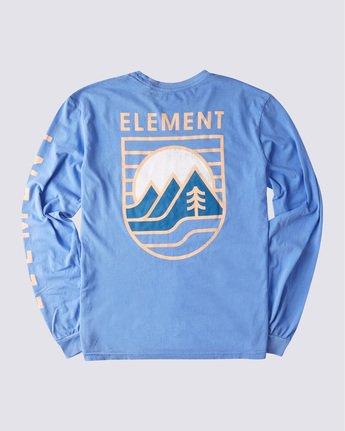 1 HILLSBORO PIGMENT LS Blue ALYZT00354 Element