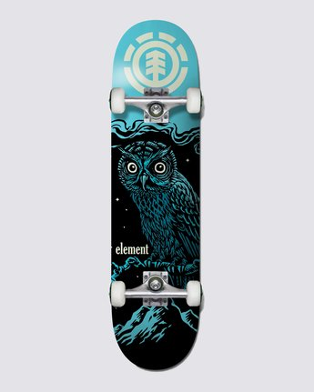NIGHT OWL  COLG2NWL