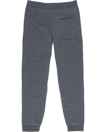 3 Cornell Fleece Pant  M312LCOP Element