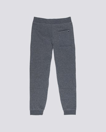 1 Cornell Fleece Pant  M312LCOP Element