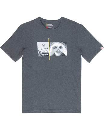 1 Nat Geo Hawk Tee Grey M406VEHA Element