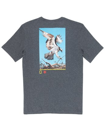 3 Soar Tee Grey M406VESA Element